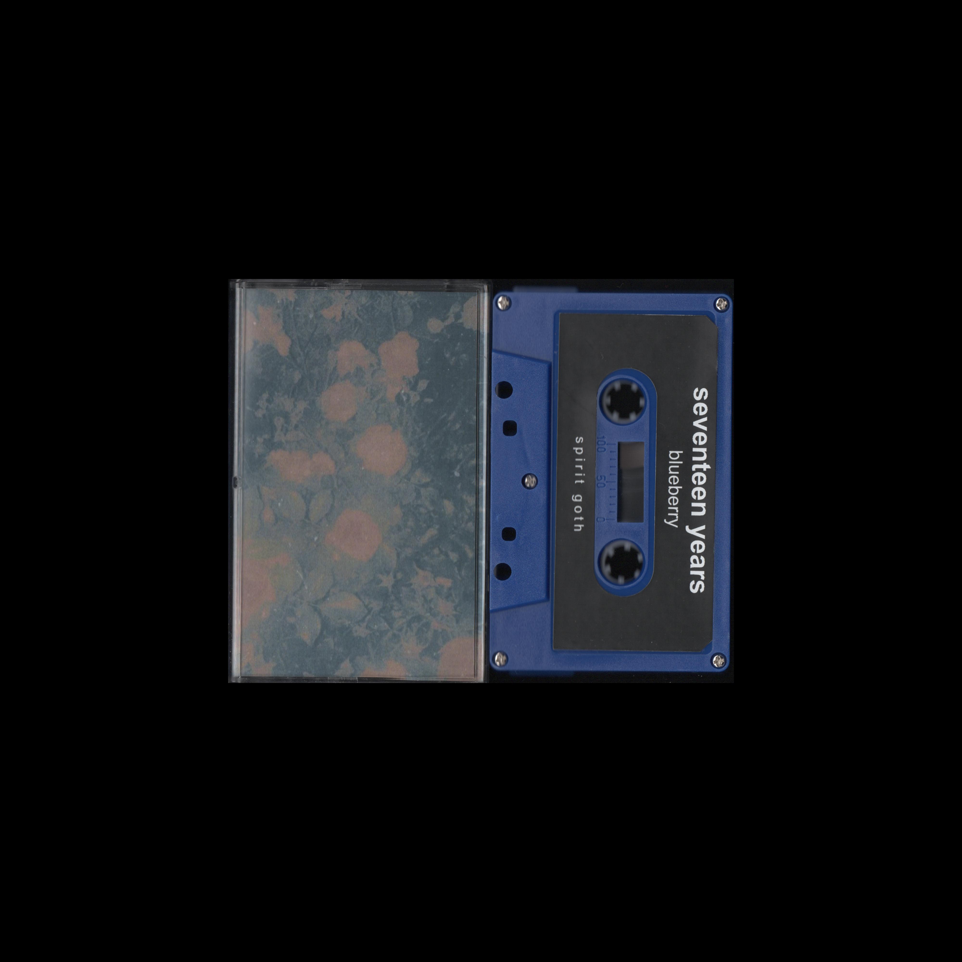 seventeen years - Blueberry (Spirit Goth Records)