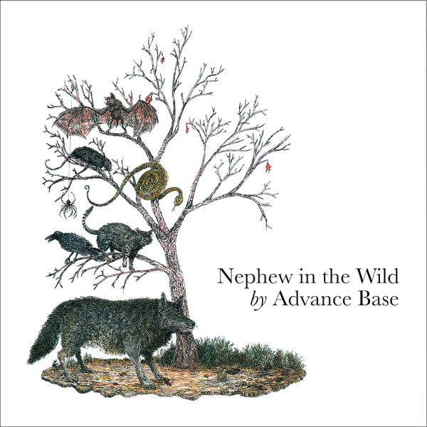 Advance Base - Nephew in the Wild LP