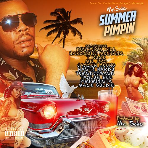 Mr. Sche - Summer Pimpin