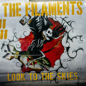 The Filaments - Look To The Skies LP