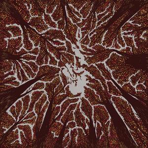 Trash Boat - Crown Shyness LP