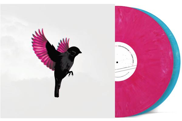 NEW ALBUM ON VINYL & CD BUNDLE
