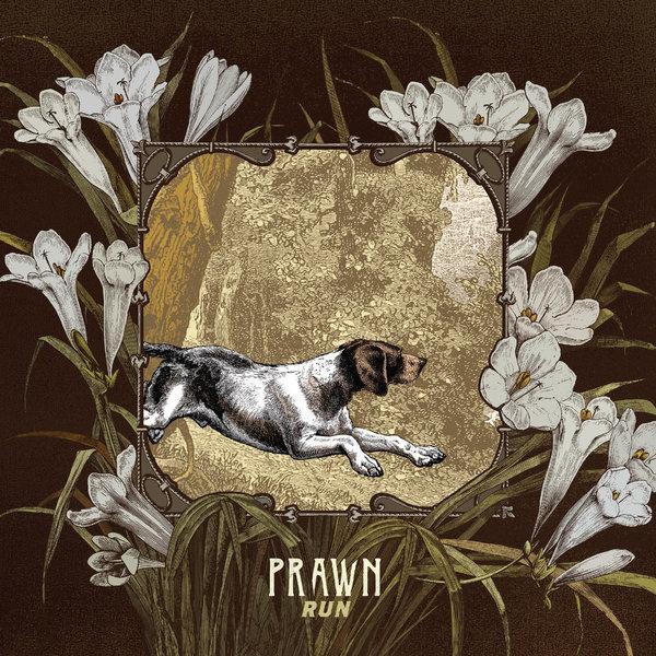 Prawn - Run