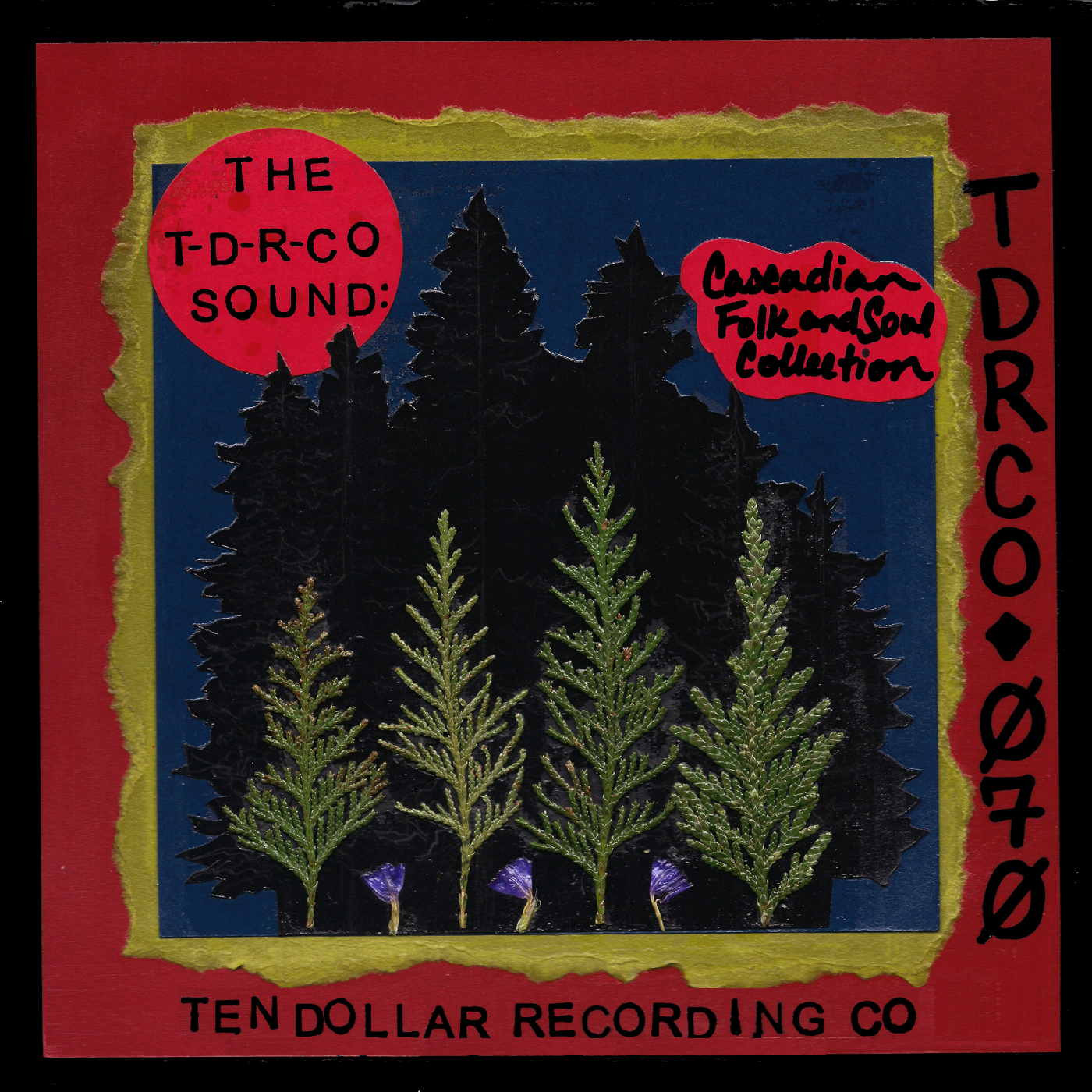 The T-D-R-Co Sound: Cascadian Folk and Soul Collection