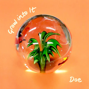 Doe - Grow Into It LP