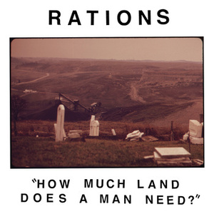 How Much Land Does a Man Need? Analysis